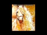 «» под музыку Татьяна и Сергей Никитины - Но только лошади летают вдохновенно. Picrolla