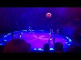 цирк с другой планеты